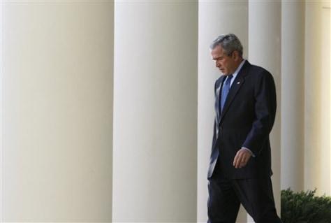 Image: Bush