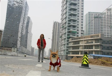 Image: Chinese dog owner walking dog