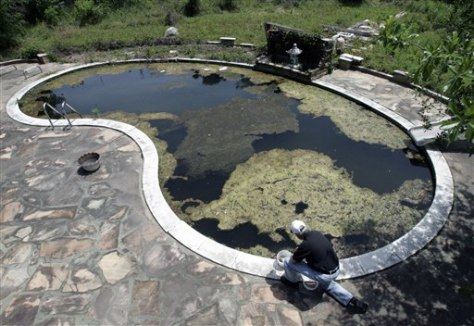 Image: Pool with algae