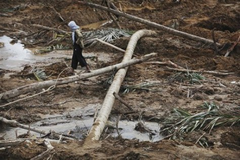 Image: A villager walks on a felled palm tree