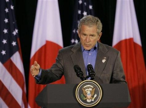 IMAGE: Bush at press conference.