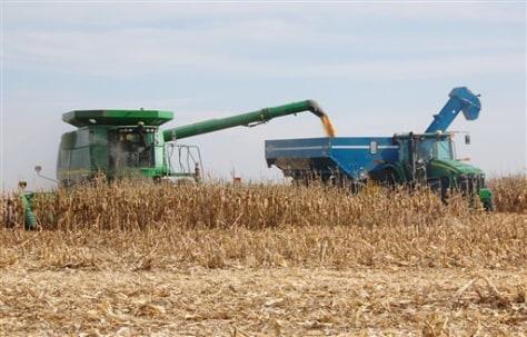 IMAGE: Farm scene corn cob ethanol