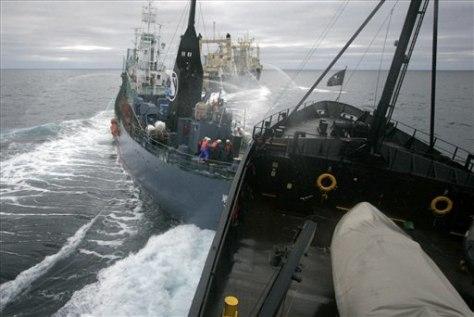 Image: Ships collide