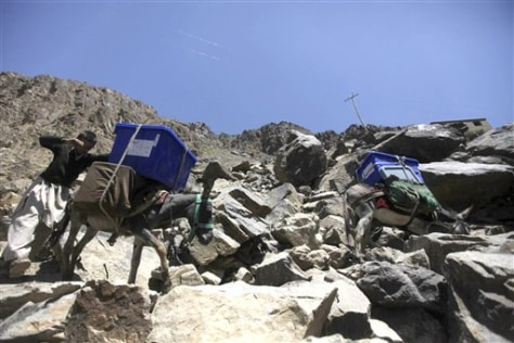 Image: Donkeys carrying ballot boxes