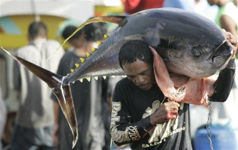 Philippines Asia Disappearing Tuna