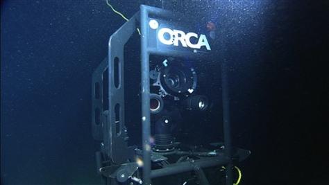 Image: Video camera on ocean floor