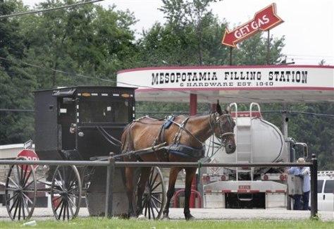 Image: Amish