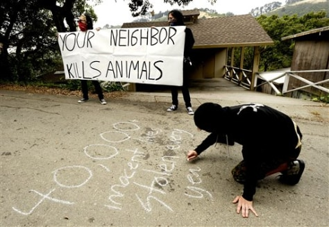 Animal Rights Violence