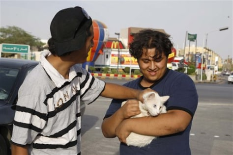Image: Saudi men with cat