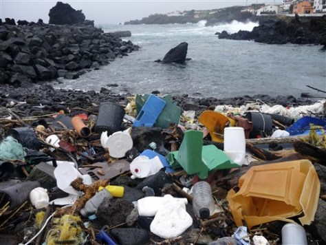 Image: Plastic garbage on Azores