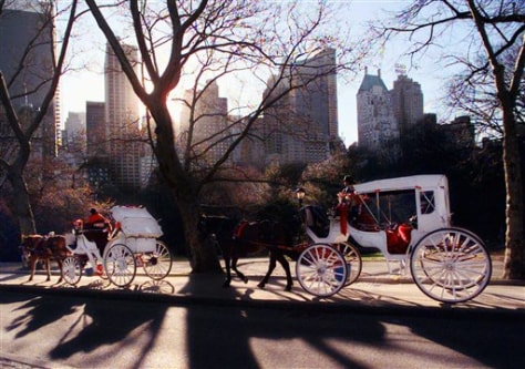 Image: Horse-drawn carriages