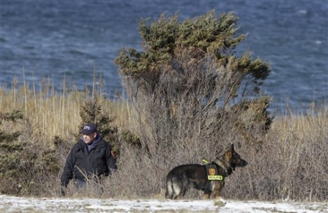 Image: Police search in the brush near Babylon, N.Y.