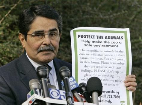 Image: Zoo director