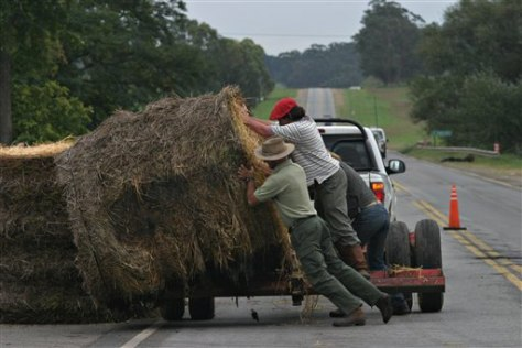 IMAGE: FARMERS BUILD BARRIERS WITH HAY