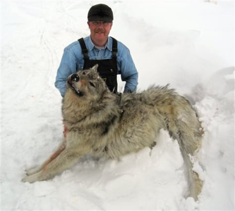 IMAGE: HUNTER WITH DEAD WOLF