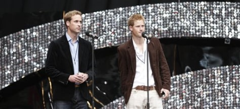 Image: William, Harry at Diana concert