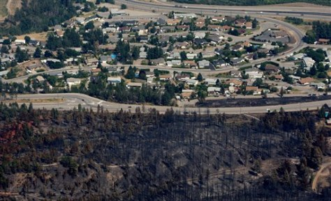 Image: Burned forest near homes