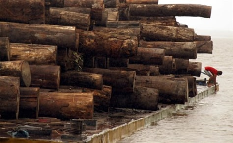 IMAGE: ILLEGALLY CUT TIMBER IN BRAZIL