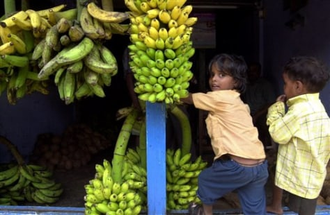 IMAGE: BANANAS IN INDIA