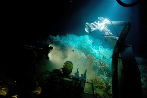 Image: Deep sea reef seen from submersible