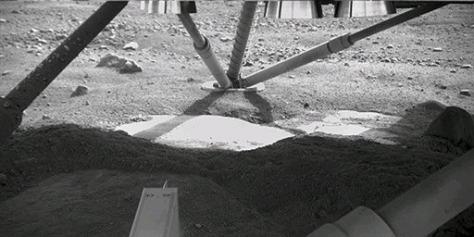 Image: Phoenix landing site