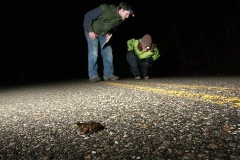 Image: Salamander Escorts