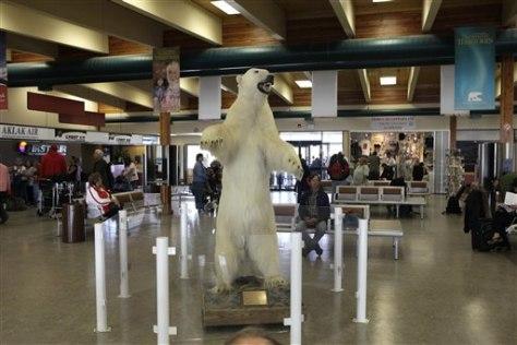 Image: Stuffed polar bear