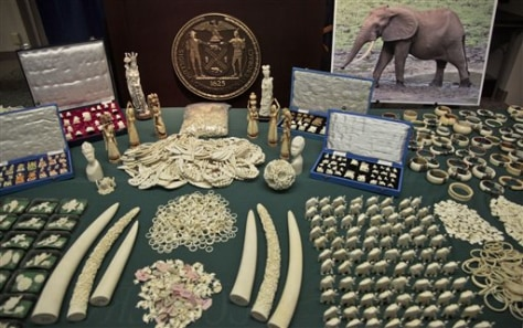 Image: Seized ivory carvings