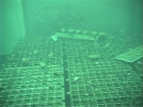 Image: Fukushima spent fuel pool