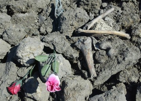 IMAGE: FLOWERS AT MASS GRAVE SITE