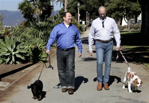 Image: Steven May and David Pisarra walking their dogs in the park