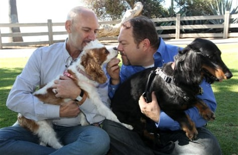 Image: Steven May & David Pisarra hold their dogs as they sit together in the park