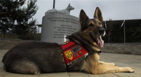 Image: Chyba in front of a military working dog monument crowned with her likeness in stone