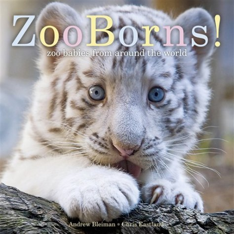 "Image: ""ZooBorns!"" book cover"