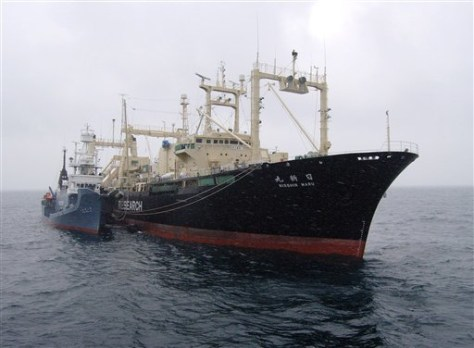 IMAGE: WHALING SHIP THAT CAUGHT FIRE