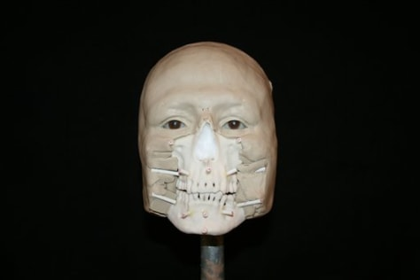 Image: Civil War sailor facial reconstruction