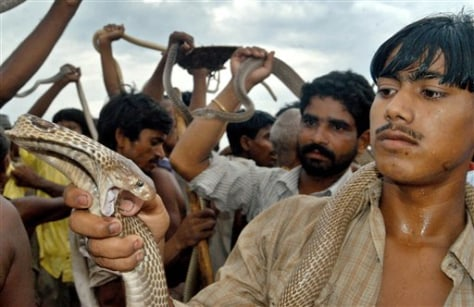 IMAGE: SNAKES HELD BY INDIANS