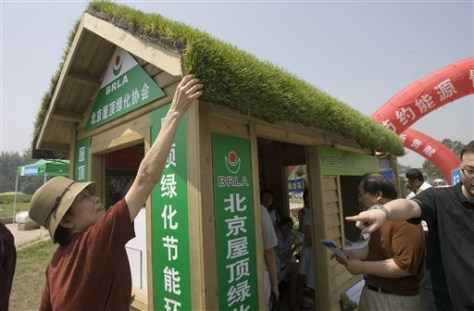 IMAGE: ROOF MADE OF GRASS IN BEIJING