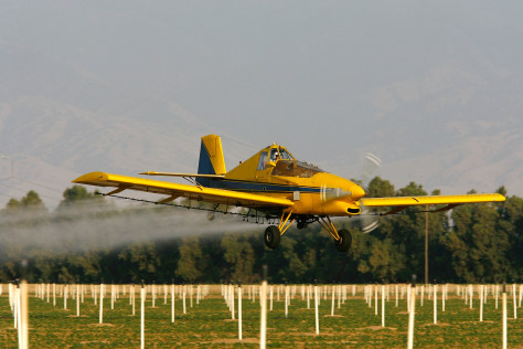 IMAGE: CROP DUSTER SPRAYS PESTICIDE