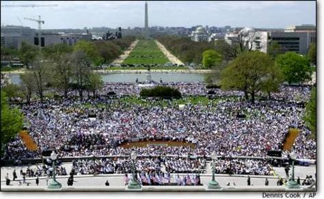 Image: Rally