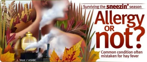 Surviving the sneezin' season: Allergy or not? - Common condition often mistaken for hay fever