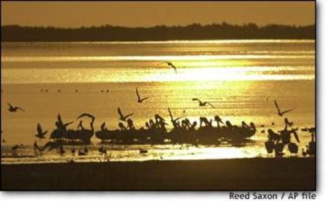 Image: Salton Sea