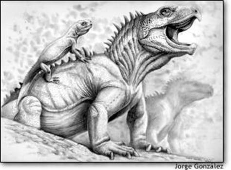 Image: Priosphenodon