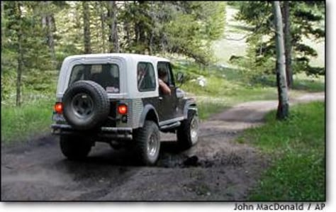 Image: Off-road vehicle in national forest