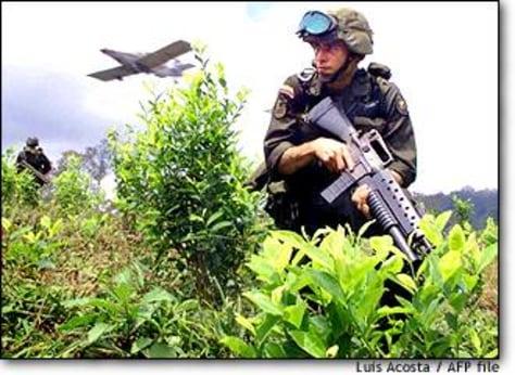 Image: Colombia-coca 1