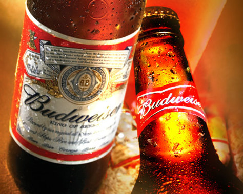 "budweiser company report Sales volumes in china grew 19%, and anheuser busch said it gained market share in the fourth quarter, with budweiser becoming the best-selling ""premium"" beer in the country the company expects better growth in china this year."