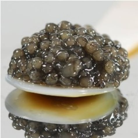 Image: Paddlefish caviar