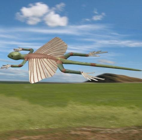 Image: Kuehneosuchus