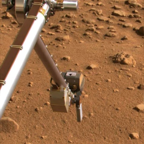 Image: The silver colored rasp protruding from NASA's Phoenix Mars Lander's Robotic Arm scoop.