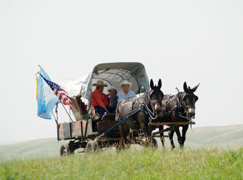 Image: Wagon train approaches Fort Pierre, S.D.
